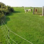 Alpaca Rotational Fence
