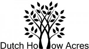 DHA_Logo_Final_Web_400