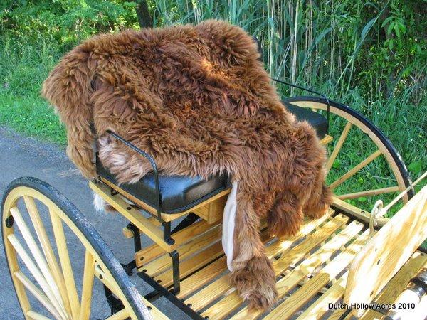 Alpaca Fur Carriage Lap Rug